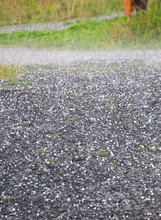 Hail Downfall. Hail On The Ground During A Thunderstorm Near Ostersund In Northern Sweden On A Summer Day.