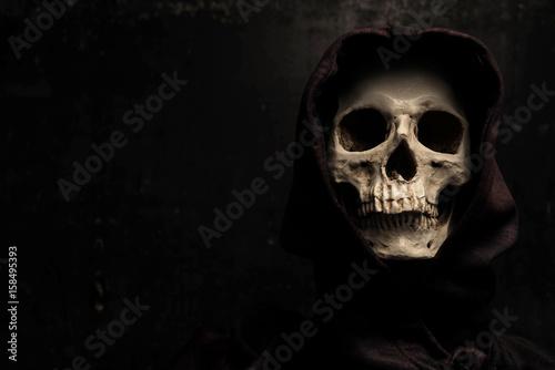 Still life art photography with skull Canvas Print