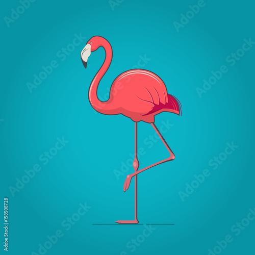 Pink flamingo on blue background