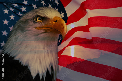 Deurstickers Eagle American flag with american eagle and sunlight