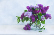 Bunch of fresh lilac flowers in vase on gray background background