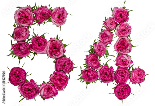 Papel de parede  Arabic numeral 54, fifty four, from red flowers of rose, isolated on white backg