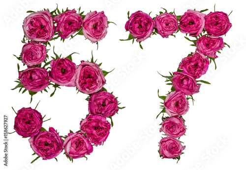 Fotografie, Obraz  Arabic numeral 57, fifty seven, from red flowers of rose, isolated on white back
