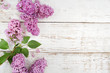 Spring lilac flowers on white wooden background. Top view, flat lay
