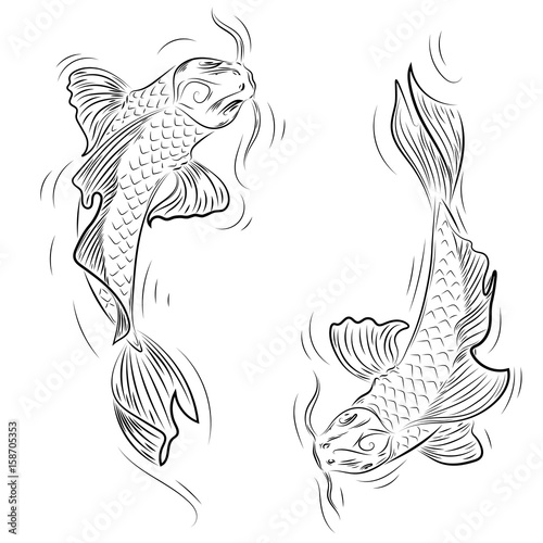 Hand Drawn Line Art Of Koi Carp Coloring Page Yin Yang Buy This Stock Vector And Explore Similar Vectors At Adobe Stock Adobe Stock