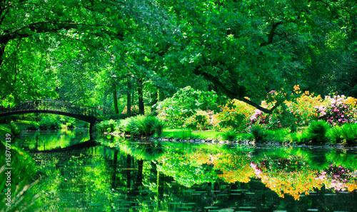 Obrazy na płótnie Canvas View at sping time park