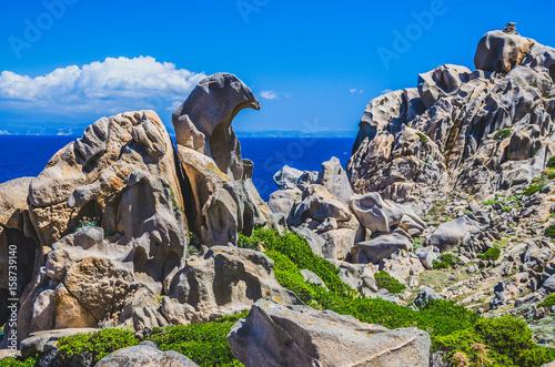 Bizarre granite rock formations in Capo Testa, Sardinia, Italy Canvas Print