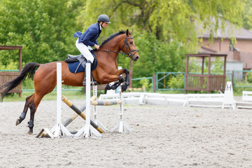 Young rider performing jump on bay horse over a hurdle on show jumping. Equestrian sport background with copy space