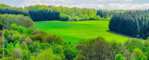 In de dag Lime groen Saarland idyllische Landschaft aus Mischwald und Feldern mit Hochsitz im Frühling bei Marpingen