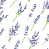 Watercolor lavender pattern - 158766717