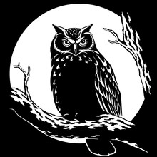 Owl At Night On A Background O...