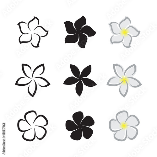 Photographie Vector of tropical flowers frangipani (plumeria) on white background