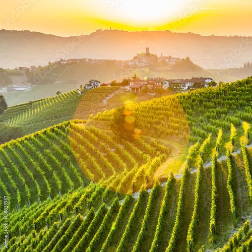 Fototapety, obrazy: Langhe, Piedmont, Italy.