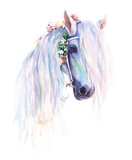 The blue horse with flowers in the mane. Original watercolor painting. - 158861544