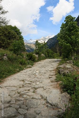 Fotobehang Olijf sentiero in Val di Mello