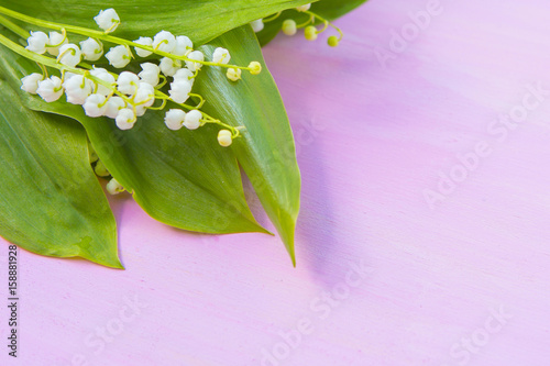 Wall Murals Lily of the valley Beautiful spring lily of the valley on pink wooden table from above