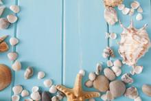 Seashells On Blue Wood, Sea Va...