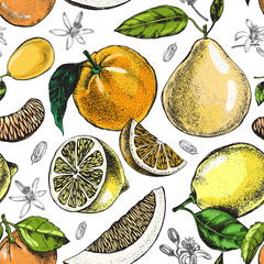 Fototapeta Owoce Decorative seamless pattern with ink hand-drawn citrus fruits. Vector illustration.