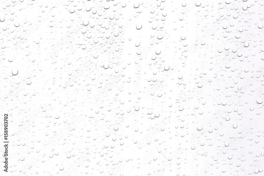 Fototapety, obrazy: Abstract water droplets isolated background with white background.