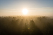panoramic view of misty forest at majestic sunrise over trees