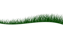 Green Grass Silhouettes, Abstract Wave Background, Vector Illustration.