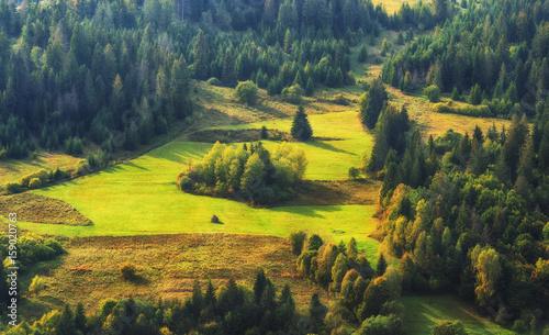 Foto auf Leinwand Blaue Nacht autumn evening