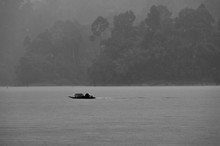 A Small Boat Navigating The Cheow Lan Lake In A Tropical Rain (black And White)
