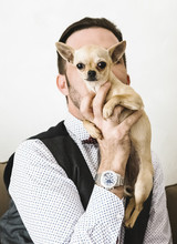 Man Portrait With Chihuahua