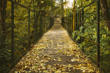 Old Wooden Pedestrian Bridge Covered With Colorful Autumn Leaves, Selective Focus