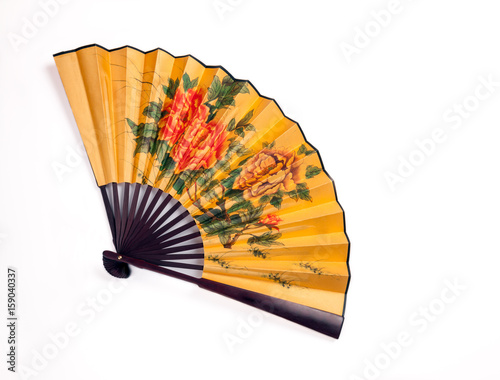 Fotografie, Tablou  Traditional hand fan