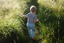 Small Child Walks On A Path In...
