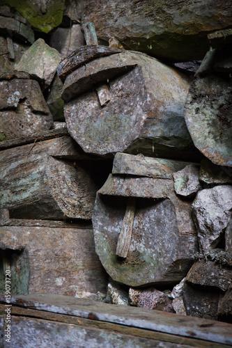 Fotografie, Obraz  Lumiang Burial Cave, Sagada, Luzon, Philippines