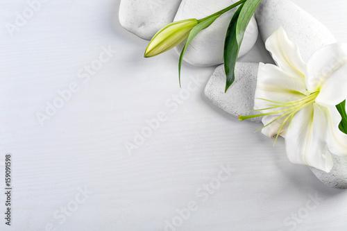Naklejki na drzwi Kwiat lotosu na delikatnym tle