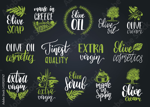 Vector hand lettering olive production signs Sketched extra