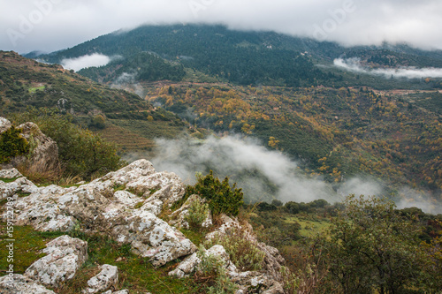 In de dag Groen blauw Autumn foggy landscape in gorge of Louise on Peloponnese, Greece