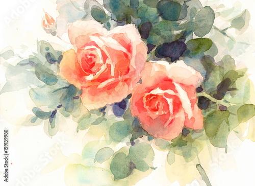 Akwareli kwiatów róż kwiecista tło tekstura Wręcza Malującą ilustrację