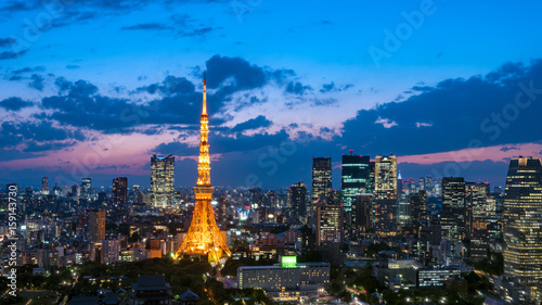 Recess Fitting Asian Famous Place 東京タワーと東京都心の夕景