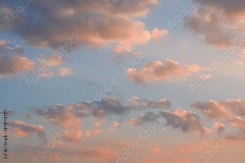 Fototapety, obrazy: evening sky