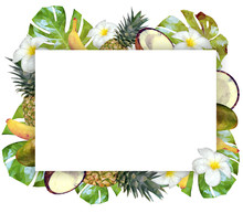 Vector Template With Tropical Fruits And Plants. Rectangular Frame With Flowers, Fruits And Palm Leaves