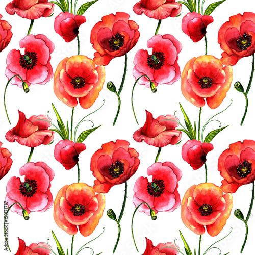 Wildflower poppy flower pattern in a watercolor style isolated wildflower poppy flower pattern in a watercolor style isolated mightylinksfo