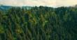 Luftaufnahme mit Wald im Gebirge im Zentrum, aufsteigende Kamerafahrt
