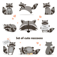 Collection Isolated Funny Racc...