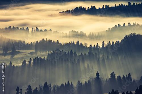 mglisty-krajobraz-gorksi