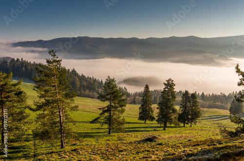 Fototapeta Morning panorama of Pieniny and Beskidy mountains, Poland landscape obraz na płótnie