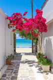 Fototapeta Kwiaty - Typical Greek narrow street with summer flowers and view over sea. Naxos island. Cyclades. Greece.
