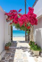 Typical Greek Narrow Street Wi...