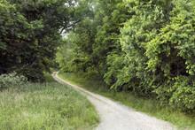 Winding Country Lane In Rural ...