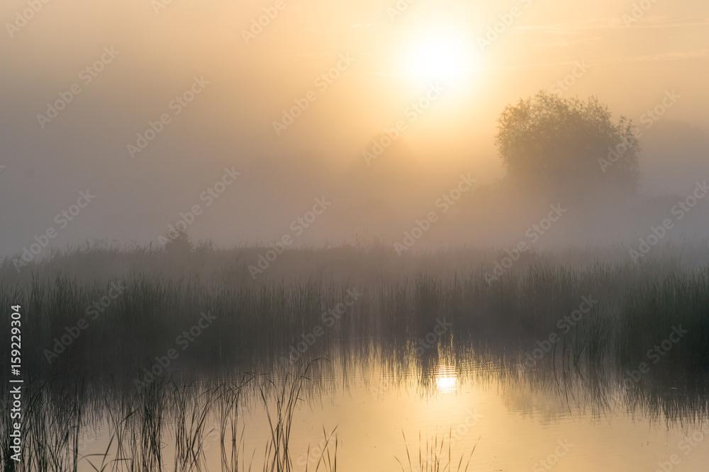 Fototapeta Świt nad wodą