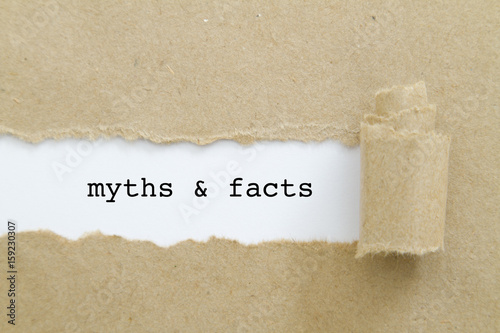 Cuadros en Lienzo myths and facts written under torn paper.