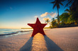 Starfish on the beach with palm trees at sunrise